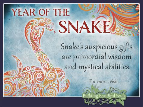 chinese zodiac snake year of the snake chinese zodiac