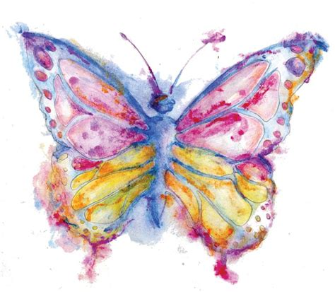 watercolor butterfly yahoo image search results