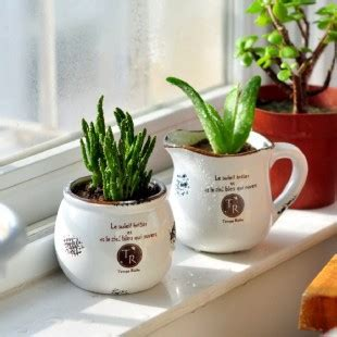 shop popular succulent plant pot from china aliexpress shop popular small ceramic pots from china aliexpress