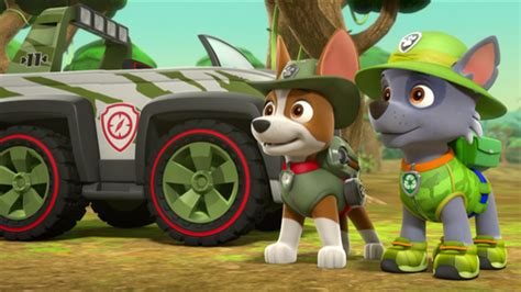 tracker jeep paw patrol patrulha canina imagens tracker hd wallpaper and