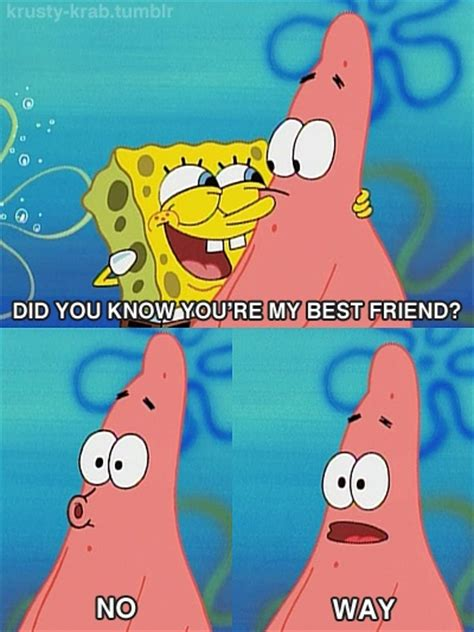 spongebob s secret book 700 best images about spongebob on