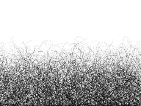 public hair ncbi rofl frequency of pubic hair transfer during sexual