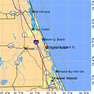 flagler florida fl population data races