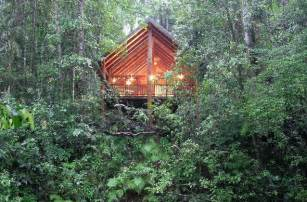 Forest Canopy Bed Australia Enjoy The View From Your Treehouse