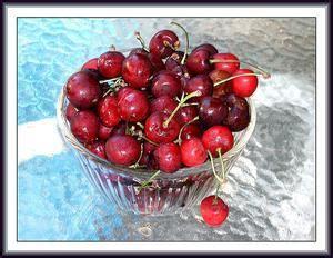 fare il vino in casa come fare il vino fatto in casa ciliegia russelmobley