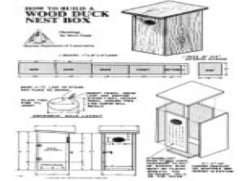 Wood Duck Nesting Boxes Wood Duck House Plans Free Houses Wood Duck Houses Plans