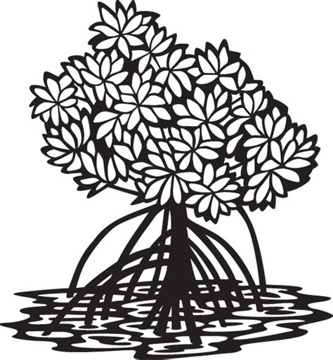 mangrove tree coloring page image gallery mangrove drawing
