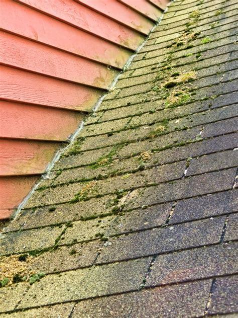 roof   clean algae  moss  asphalt shingles