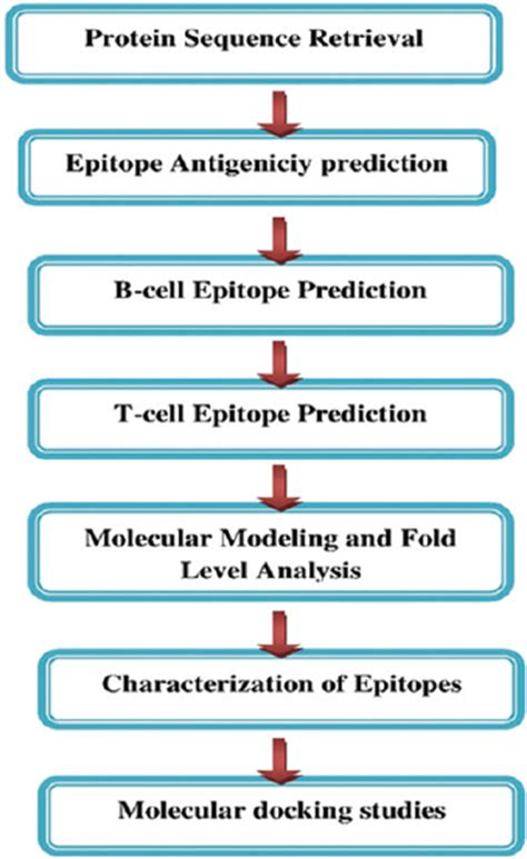 z protein lassa virus in silico prediction of b and t cell epitope on lassa