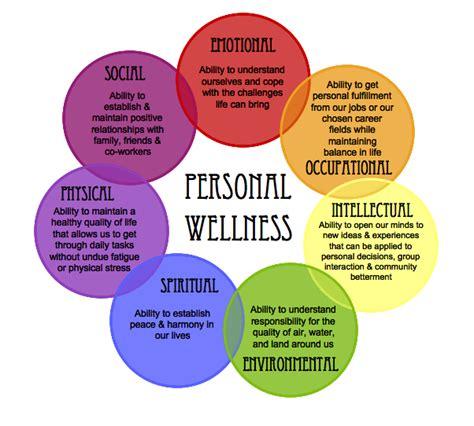 weight management wellness programs the wellness wheel damron chiropractic wellness