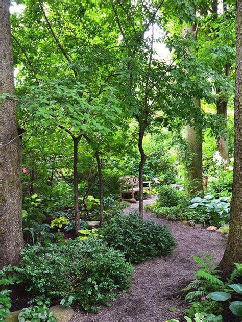 woodlands backyard best 25 woodland garden ideas on pinterest