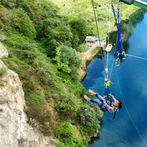 taupo bungy swing touring the north island of new zealand with haka tours