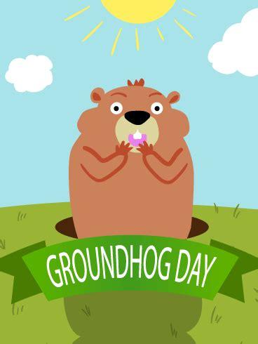 sunny day groundhog day card birthday greeting cards  davia