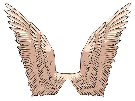 Drawing Wings by How To Draw Wings