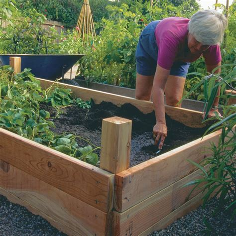 building a raised garden bed build your own raised beds vegetable gardener