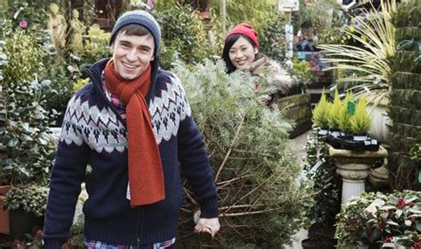 what type of christmas tree lasts the longest deborah tips on picking the tree this garden style express