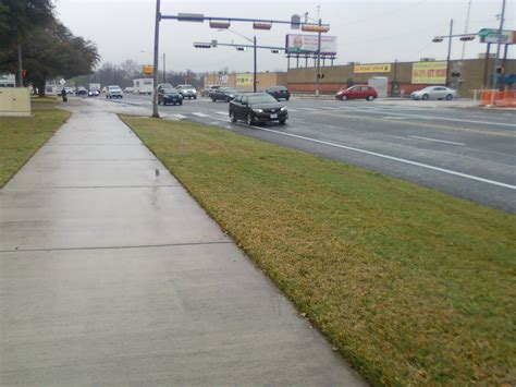 Type Of Trees by File Sidewalk And Road After Rain Jpg Wikimedia Commons