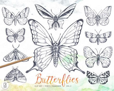fiori e farfalle disegni fiori e farfalle disegni
