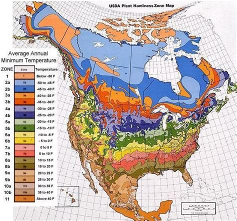 plant hardiness zones for the united states and canada