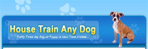 house train any dog house train secrets for any dog or puppy guaranteed to work