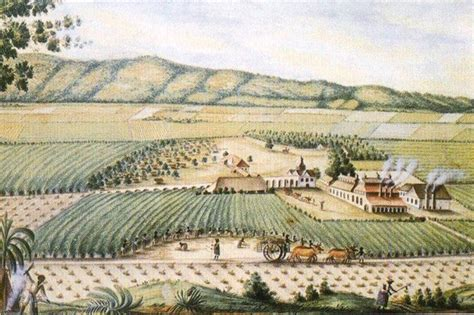 13 tezcuco plantation image by greg english a song of chocolate and sugar mutual causality in the