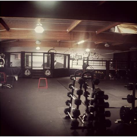 sala near me 17 best ideas about mma gym on pinterest mma clubs near