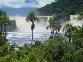 cacao travel nationalpark canaima