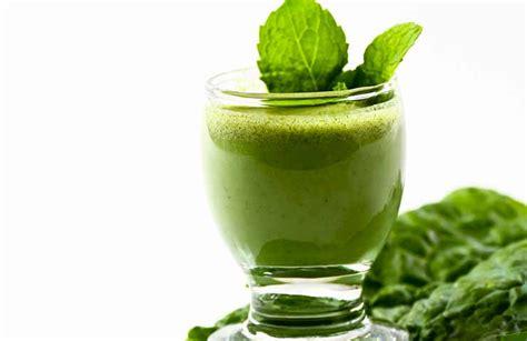 imágenes de jugos verdes todo lo que ten 233 s que saber sobre los licuados verdes dietas