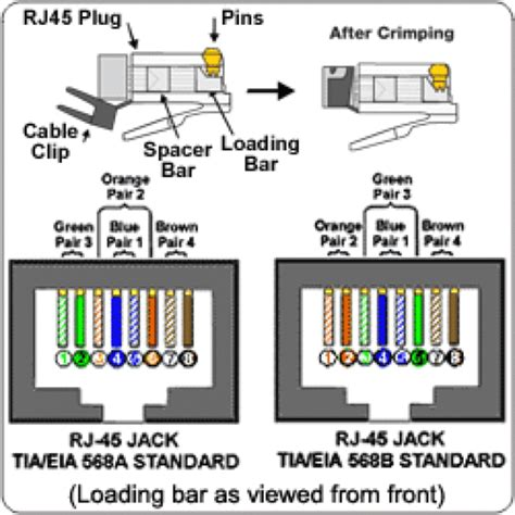 fantastic cat6 connector wiring diagram images