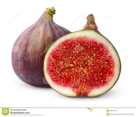 Fig Clipart