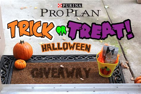 Proplan Kitten 7kg Fresh Pack Pro Plan sponsored the purina pro plan cat quot trick or treat quot giveaway makeup and