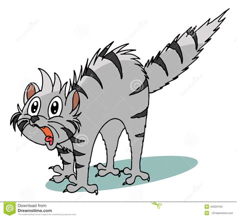 disegni clipart scared cat clipart 101 clip