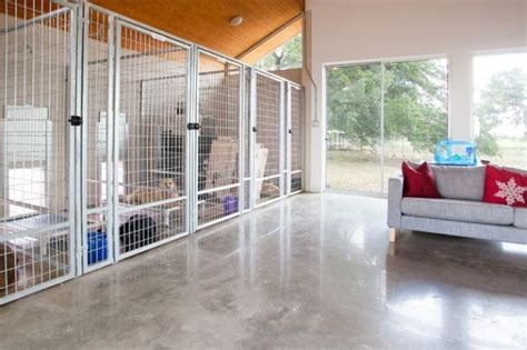 stylish houses for pered pooches