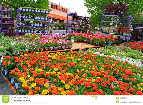 home depot spring plant sale insured  ross