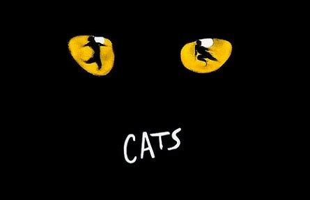 our house musical soundtrack cats benelux tour reference project energyst com