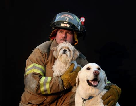 firemen with puppies infographic pet safety the dogington post