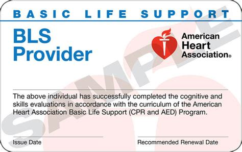 Bls Card Template by Replacement Cpr Card Cpr Choice Customers Only