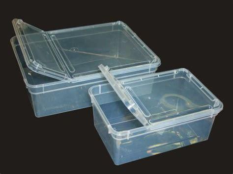 terrarium boites plastique jpg  bytes