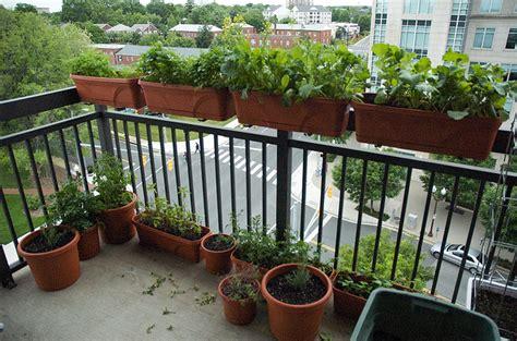 60 Best Balcony Vegetable Garden Ideas 2016 Roundpulse Balcony Vegetable Gardens