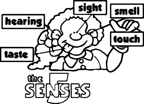 Colouring Pages 5 Senses Free Coloring Pages Of Five Five Senses Coloring Page