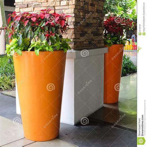Décoration Pot De Fleur En Terre Cuite by D 233 Coration Pot De Fleur Apprendre D Corer Des Caches Pots