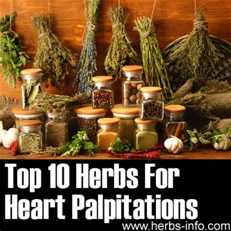 Detox Palpitations by Herbs For Palpitations