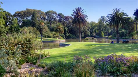 Melb Botanical Gardens Royal Botanic Gardens Melbourne 1 By Okavanga On Deviantart