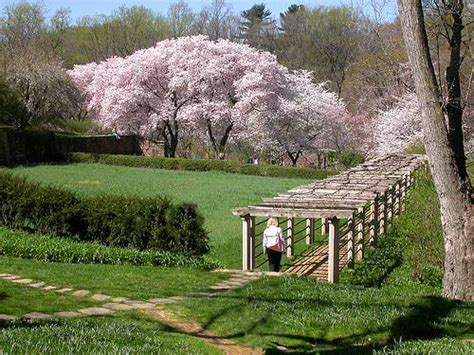 Home And Garden Usa The Best Gardens In The World Part 5 Dumbarton Oaks Usa