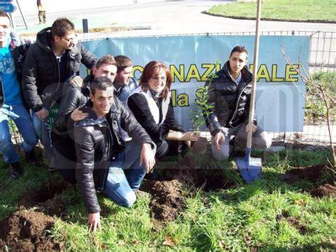 sila tv notizie san in fiore legambiente e parco della sila promuovono la cultura