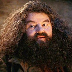 the of william smith the miss silver mysteries books j k rowling reveals the sad about hagrid zergnet