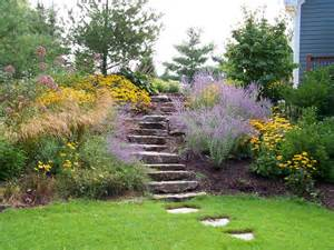 Flowers Grand Rapids Michigan - native plants landscaping with native plants rivertown