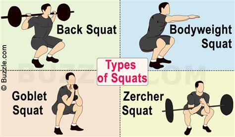 Bench Squat Deadlift Workout 10 Types Of Squat Variants To Break The Workout Monotony