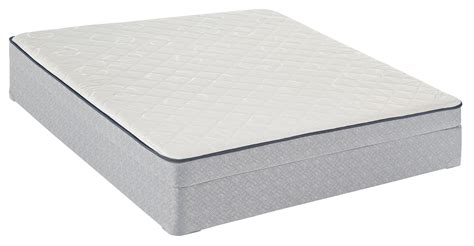 Are Firm Mattresses Better For Your Back by Sealy Beckenham Firm White King Mattress Home Mattresses Accessories Mattresses