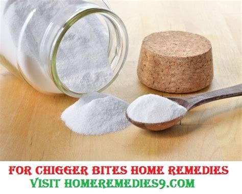 home remedies to treat chigger bites chigger bites remedies